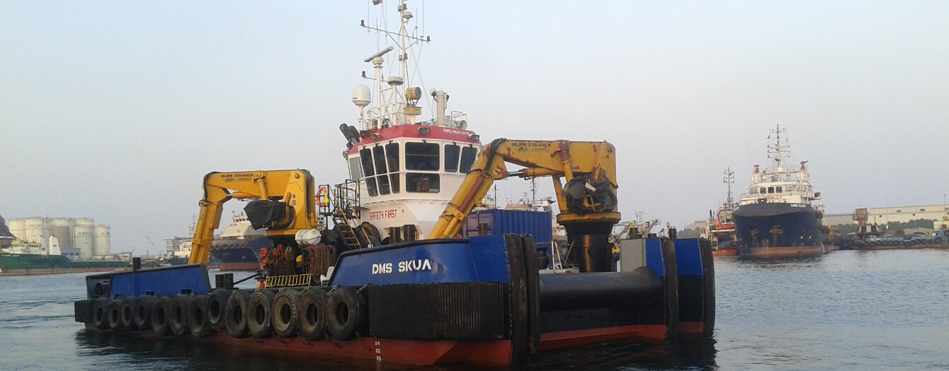 Damen Multi Cat 2611 'DMS Skua'